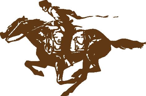 NPEA Rider