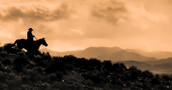 Photograph generously provided by Faith Photography of Nevada.