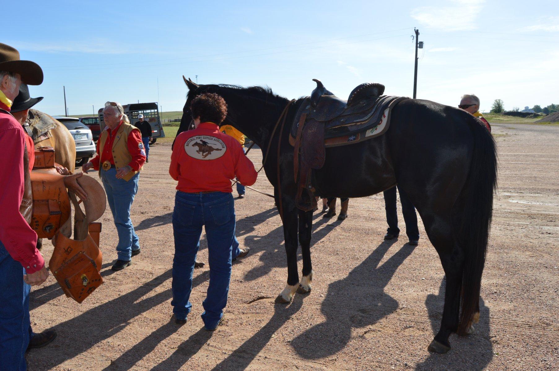 Story 2017 06 08 083206 National Pony Express Association